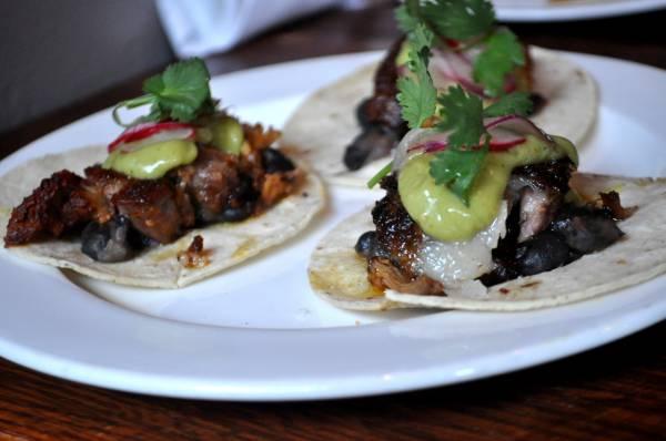 regalbeagle_tacos[1].JPG